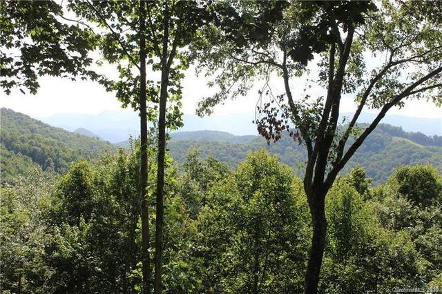 LOT 64 High Line Road, Sylva, NC 28779 (#3634694) :: Exit Realty Vistas