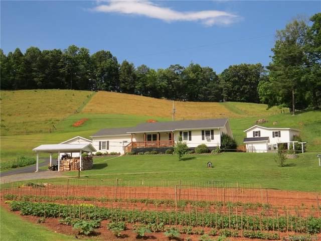 391 Short Branch, Green Mountain, NC 28740 (#3635316) :: Rinehart Realty