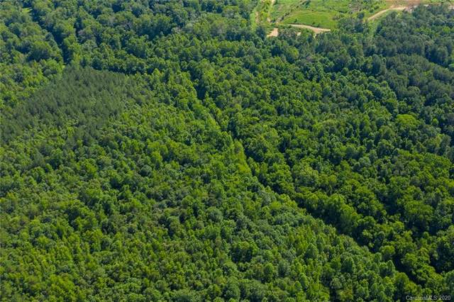 Lot 2 Wildlife Lane, Huntersville, NC 28078 (#3635455) :: Carlyle Properties