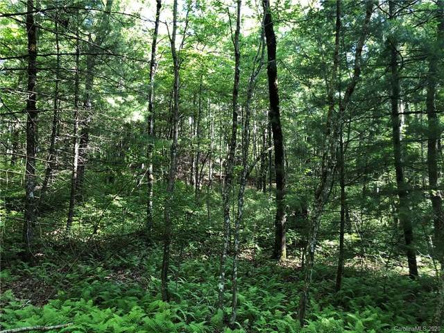 TBD Feed Rock Road Sec K L-7, Brevard, NC 28712 (#3635738) :: Rinehart Realty