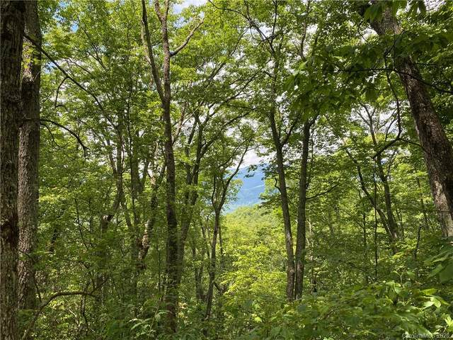 141 Preserve Road #141, Sylva, NC 28779 (#3635915) :: Mossy Oak Properties Land and Luxury