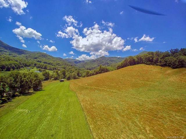 0 Hemphill Road, Waynesville, NC 28785 (#3636682) :: Robert Greene Real Estate, Inc.