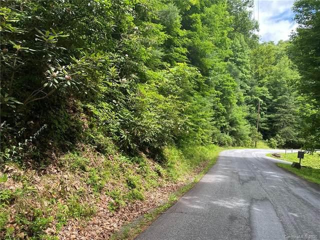 TBD Springbrook Lane, Brevard, NC 28712 (#3636692) :: LePage Johnson Realty Group, LLC