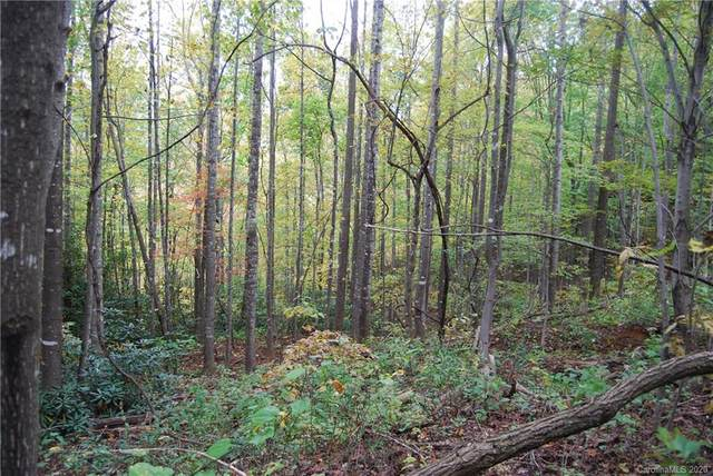 40 Woodsey Lane, Swannanoa, NC 28778 (#3637159) :: Rinehart Realty