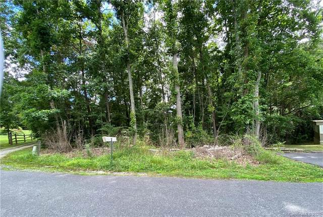 488 Onteora Boulevard, Asheville, NC 28803 (#3638521) :: Puma & Associates Realty Inc.