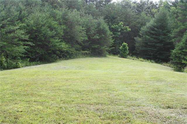 60 Al Faye Farm Way, Weaverville, NC 28787 (#3638577) :: Keller Williams Professionals