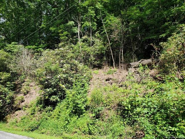 Lot 2 Wildcat Mountain Road, Waynesville, NC 28786 (#3639567) :: Bigach2Follow with Keller Williams Realty