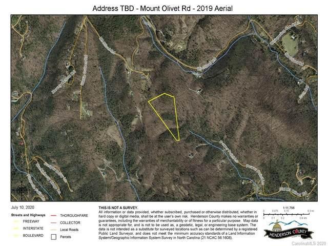 0 Mt Olivet Road, Zirconia, NC 28790 (#3639832) :: The Mitchell Team