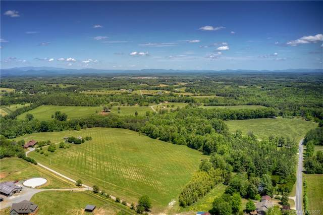 119 Horne Road, Tryon, NC 28782 (#3640210) :: Caulder Realty and Land Co.