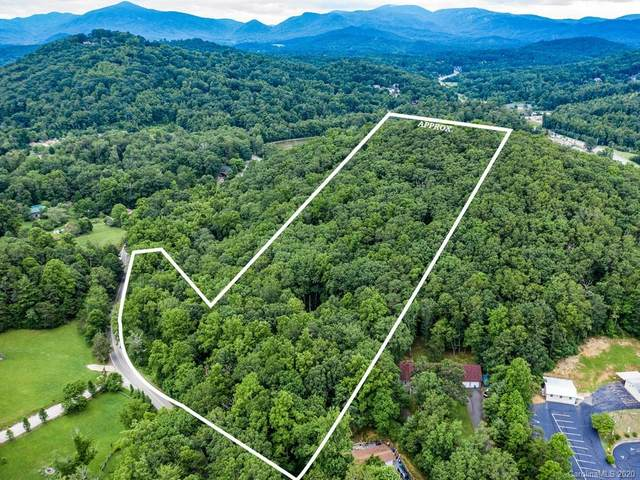 49 Reeds Creek Road, Fairview, NC 28730 (#3640336) :: Zanthia Hastings Team