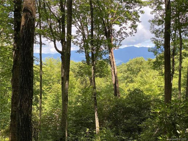 168 Preserve Road #168, Sylva, NC 28779 (#3640358) :: IDEAL Realty