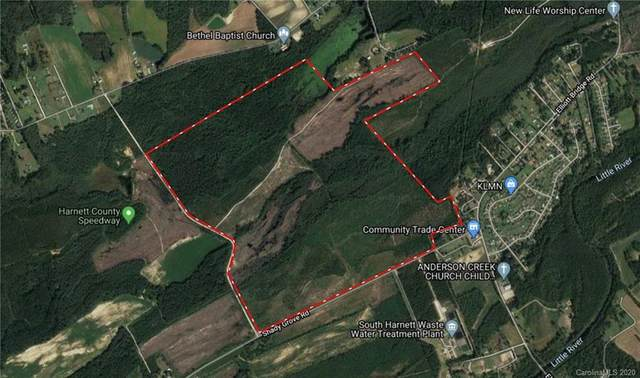 399.13 Acres Shady Grove Road, Spring Lake, NC 28380 (#3640686) :: Mossy Oak Properties Land and Luxury
