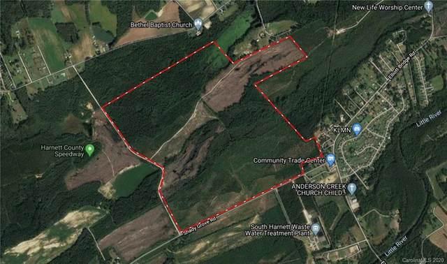399.13 Acres Shady Grove Road, Spring Lake, NC 28380 (#3640686) :: Johnson Property Group - Keller Williams