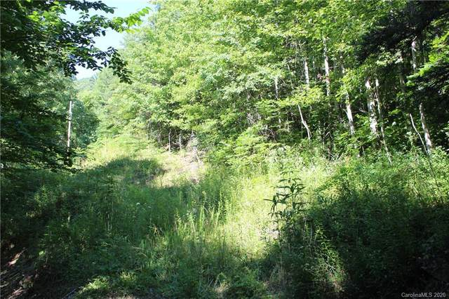 00 Overlook Drive Lot 24 & Lot 26, Robbinsville, NC 28771 (#3640972) :: Exit Realty Vistas
