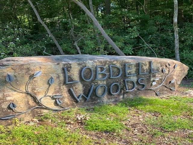 Lot 41 Lobdell Road #41, Pisgah Forest, NC 28768 (#3642211) :: Mossy Oak Properties Land and Luxury