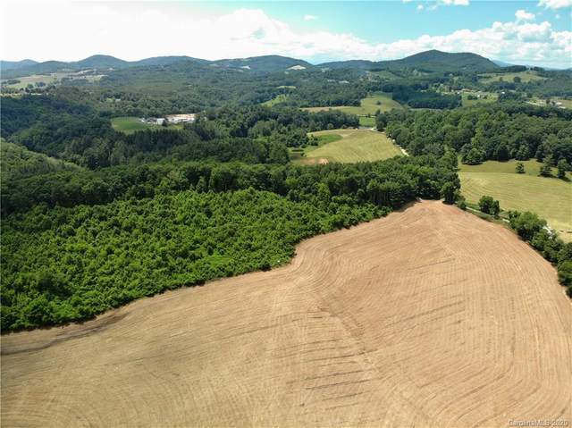 821 Sally Road, Sparta, NC 28675 (#3642814) :: Mossy Oak Properties Land and Luxury