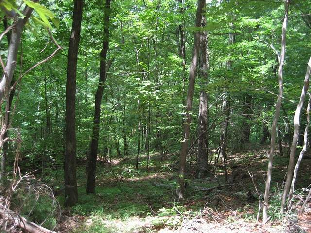 000 Bobcat Trail, Saluda, NC 28773 (MLS #3643310) :: RE/MAX Journey