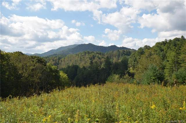 198 North Bend Drive, Green Mountain, NC 28740 (#3643588) :: Cloninger Properties