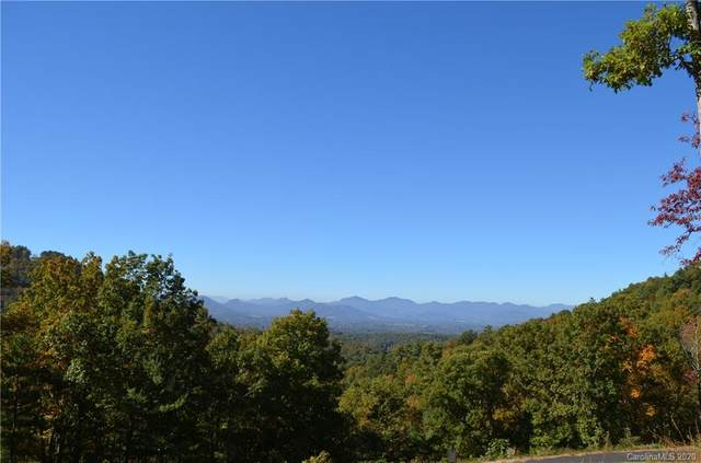 81 Starling Pass #90, Asheville, NC 28804 (MLS #3644026) :: RE/MAX Journey