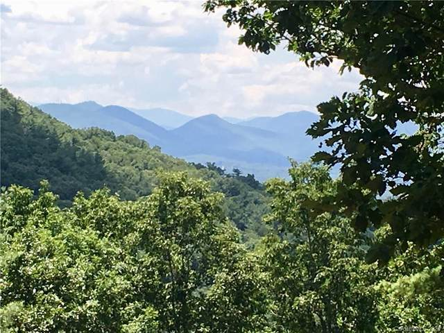 91 Starling Pass 91 And 92, Asheville, NC 28804 (#3644027) :: Mossy Oak Properties Land and Luxury