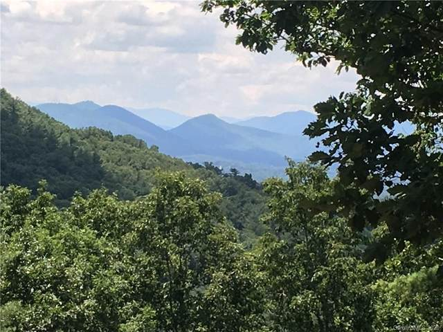 81 and 91 Starling Pass 90,91,92, Asheville, NC 28804 (MLS #3644028) :: RE/MAX Journey