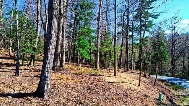 000 Horizon Lane, Flat Rock, NC 28731 (#3644565) :: Caulder Realty and Land Co.