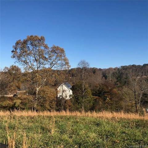 506 Dykeman Trail #88, Asheville, NC 28804 (#3644599) :: DK Professionals Realty Lake Lure Inc.