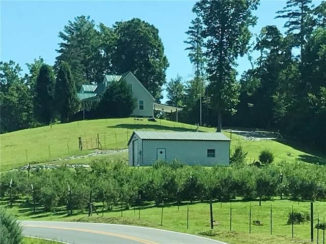 6249 Harmony Grove Road, Nebo, NC 28761 (#3645537) :: MartinGroup Properties