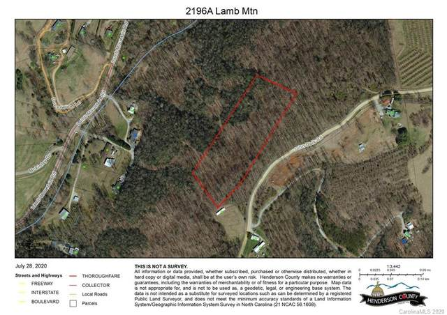 2196A Lamb Mountain Road, Hendersonville, NC 28792 (#3645714) :: Keller Williams Professionals