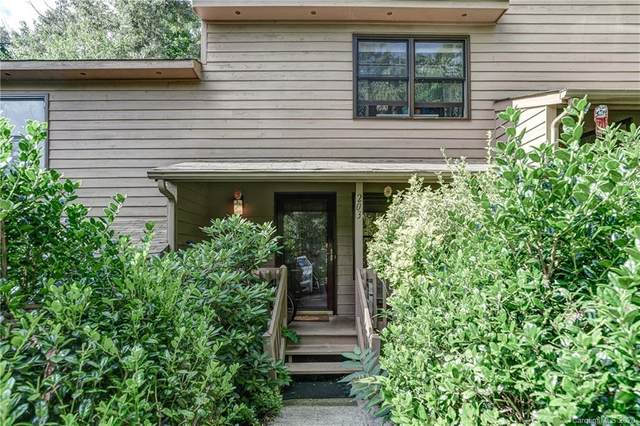 203 Buck Cove Terrace, Asheville, NC 28805 (#3645919) :: Homes Charlotte