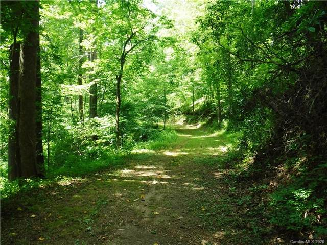 Lot 30 South Cove Road, Mill Spring, NC 28756 (#3645980) :: DK Professionals Realty Lake Lure Inc.