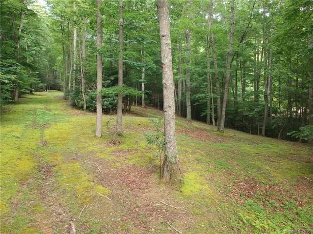 TBA Celo Cove Drive 48,49, Burnsville, NC 28714 (#3646186) :: Robert Greene Real Estate, Inc.