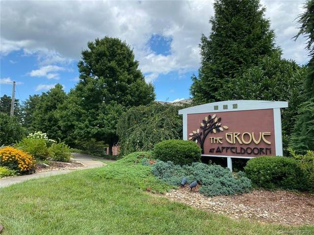 221 Appeldoorn Circle, Asheville, NC 28803 (#3646438) :: DK Professionals Realty Lake Lure Inc.
