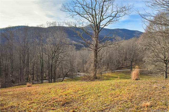 99999 Sugar Maple Drive 2 & 3, Black Mountain, NC 28711 (#3646520) :: BluAxis Realty