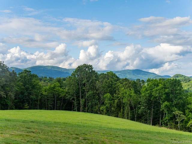 Lot 7 & 8 Turkey Ridge Road 7 & 8, Fletcher, NC 28732 (#3647072) :: Carlyle Properties
