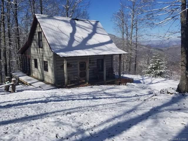 2630 Conley Mountain Association Road, Whittier, NC 28789 (#3647397) :: Exit Realty Vistas