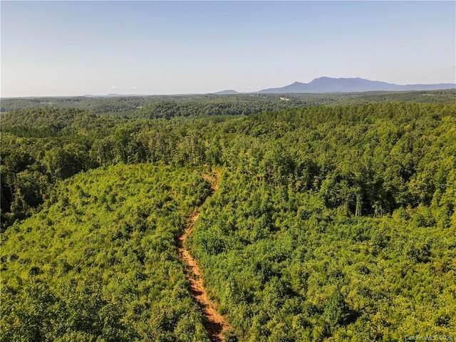 000 Joy Lane, Mill Spring, NC 28756 (#3647712) :: Stephen Cooley Real Estate Group