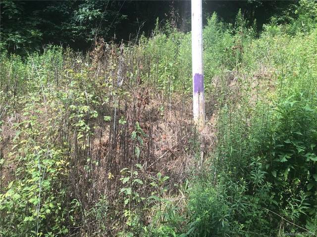 99999 Coxes Creek Road, Burnsville, NC 28714 (#3648377) :: Rinehart Realty