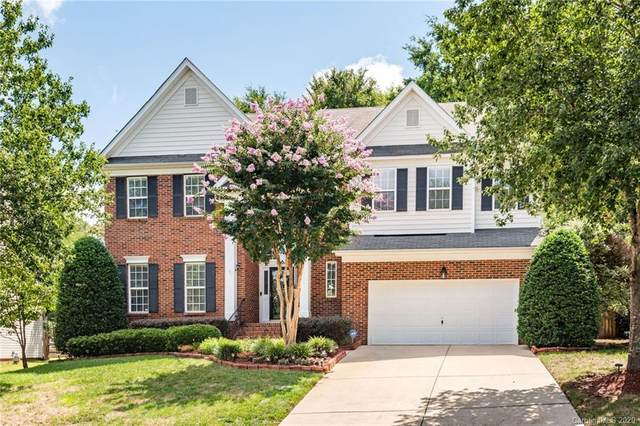 6515 Red Maple Drive, Charlotte, NC 28277 (#3648453) :: Stephen Cooley Real Estate Group