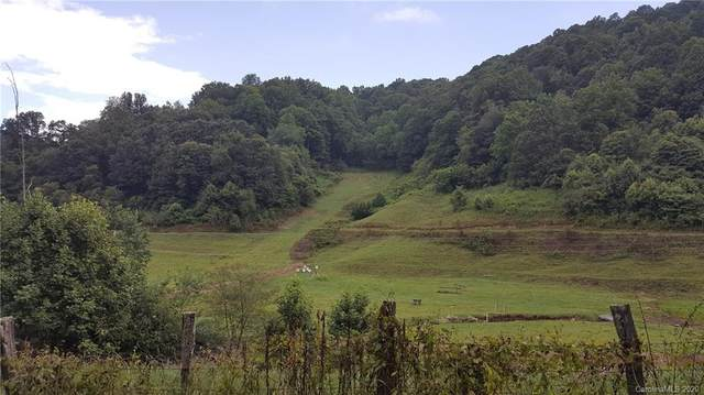 TBD Laurel Valley Road, Mars Hill, NC 28754 (#3648475) :: LePage Johnson Realty Group, LLC