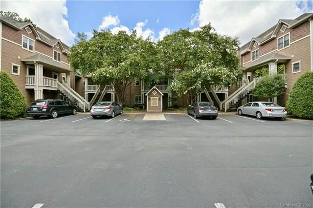 333 Circle Avenue B, Charlotte, NC 28207 (#3648556) :: Carlyle Properties