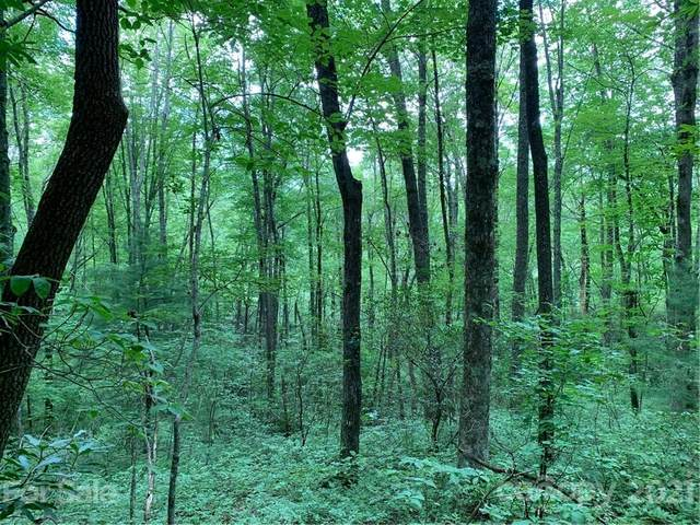 Lot 14 N Highland Drive #14, Lake Toxaway, NC 28747 (#3649073) :: Keller Williams Professionals