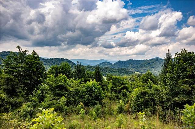 Lot 5 Mary Gray Drive, Clyde, NC 28721 (#3649190) :: DK Professionals