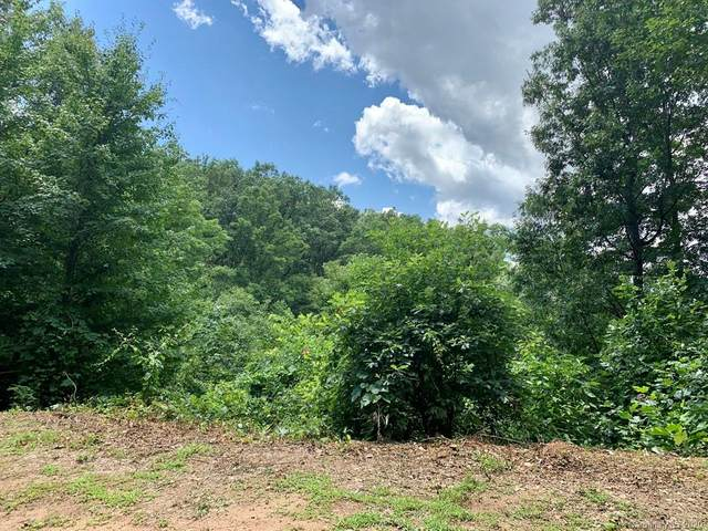 Lot 1 Johnson Farm Road, Canton, NC 28716 (#3649389) :: Keller Williams South Park
