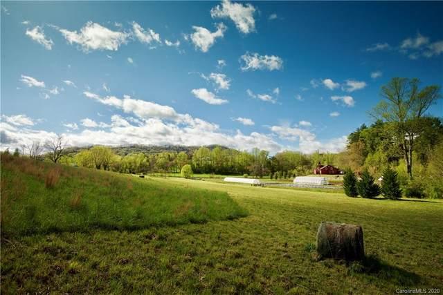 2 Walnut Valley Parkway #008, Arden, NC 28704 (#3649738) :: Rinehart Realty