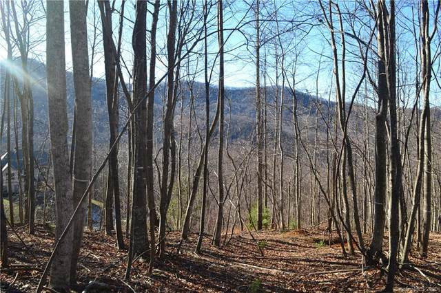 1305 Double Knob Drive Lot 95, Arden, NC 28704 (#3649766) :: Carver Pressley, REALTORS®