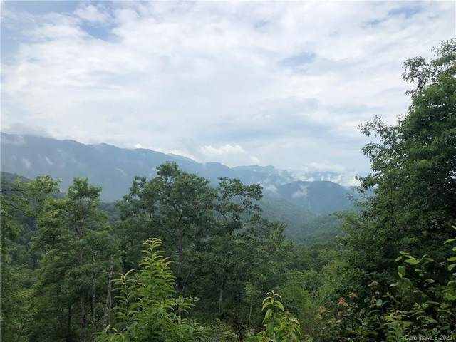 000 Picnic Gap Road A, Maggie Valley, NC 28751 (#3649835) :: Premier Realty NC