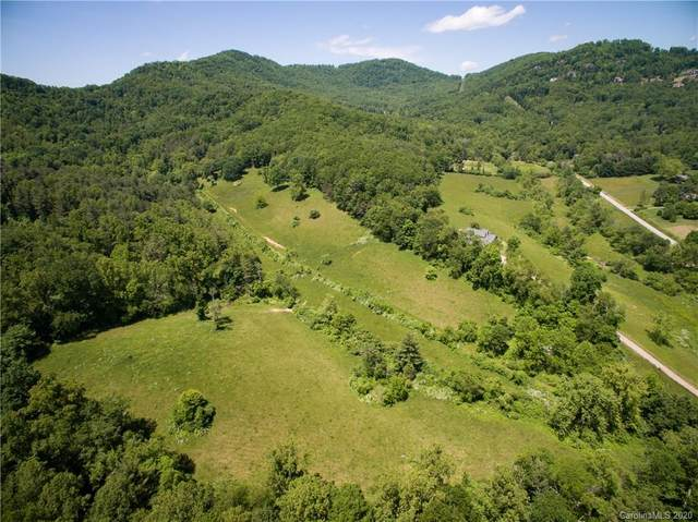 182 Pinners Cove Road, Asheville, NC 28803 (#3650449) :: Rinehart Realty