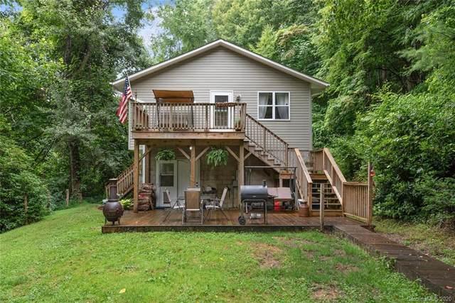 113 Ripple Branch Road, Barnardsville, NC 28709 (#3650533) :: High Performance Real Estate Advisors