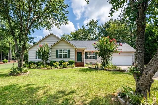 8733 Oldenburg Drive, Mount Pleasant, NC 28124 (#3651136) :: Robert Greene Real Estate, Inc.